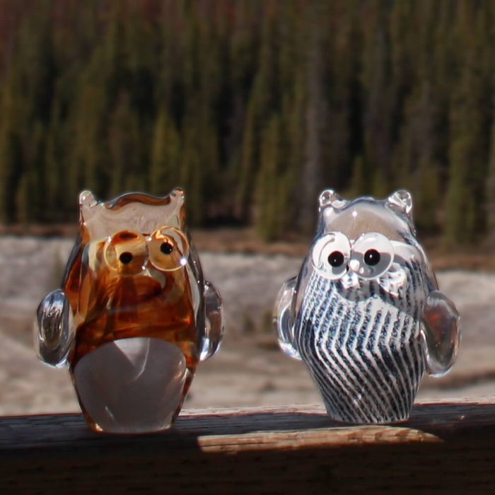 Glass Owls